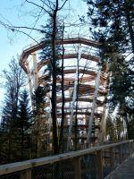 Baumwipfelpfad-Turm_big
